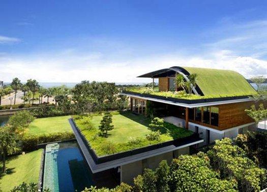 Ландшафтный дизайн – озеленение крыш