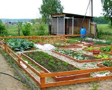 Подготовка дачного земельного участка под посадку овощных культур