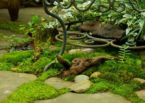 Три способа применения мха на садовом и дачном участках
