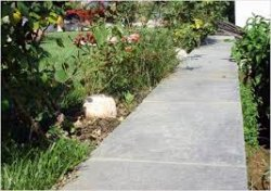 Как обустроить бетонную тропинку