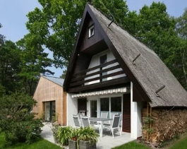Какими бывают дачные дома